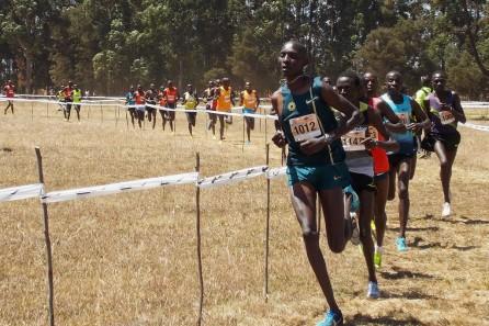 DISCOVERY KENYA
